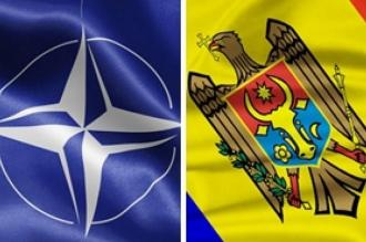 Чолош: Румыния обеспечит сотрудничество Молдовы с НАТО