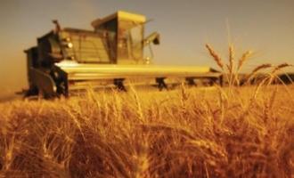 Минсельхоз обещает выплатить компенсации сельхозпроизводителям до конца марта