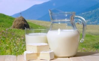 Птицеводы и производители молочных продуктов ждут защитных пошлин от продукции из Украины